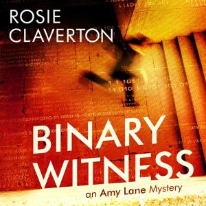 binary witness audiobook cover