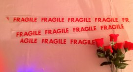 Fragile red tape flowers