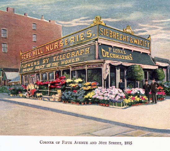 Florist at Fifth Avenue and 36th Street, Manhattan, ca 1890