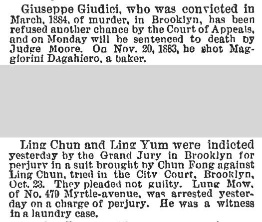 NYT November 1885