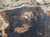 Ancient petroglyphs (many dotted around)