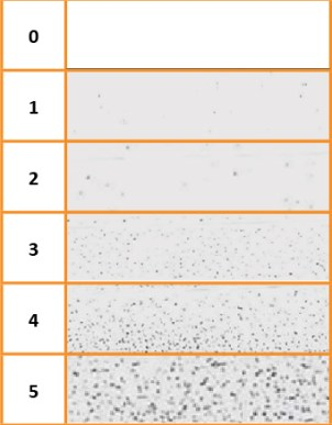 dust chart