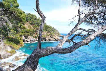 Lazurowe Wybrzeże i pachnąca kwiatami Nicea