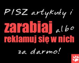Współpraca z Rosomag.pl