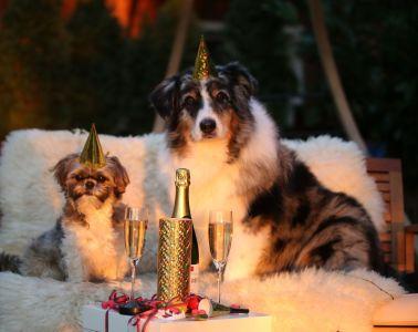 Intrygujące zwyczaje noworoczne