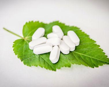 Antybakteryjne właściwości roślin – zioła lecznicze