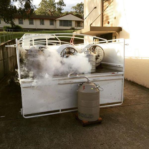 Liquid Nitrogen delivery