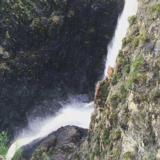 Dangars Falls