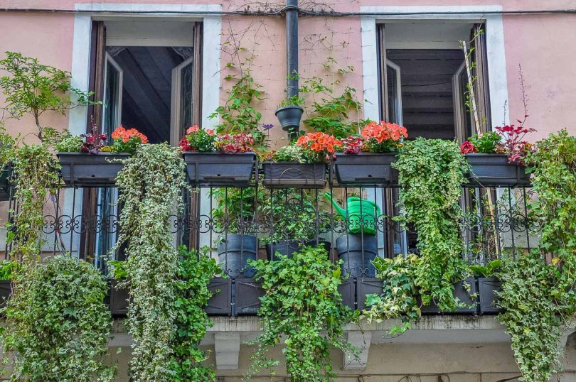 A balcony garden decoration idea - Vicenza, Italy - rossiwrites.com