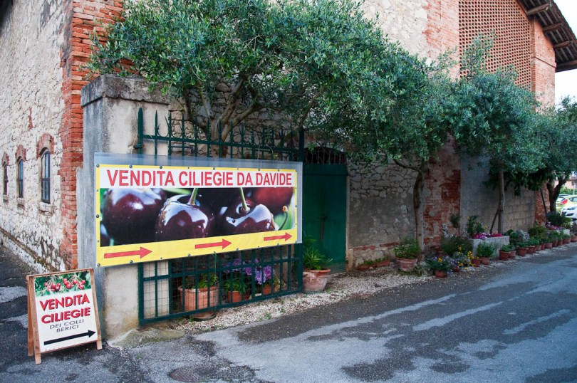 Advertisement of a local cherry seller, Festa dea Siaresa, Castegnero, Veneto, Italy - www.rossiwrites.com