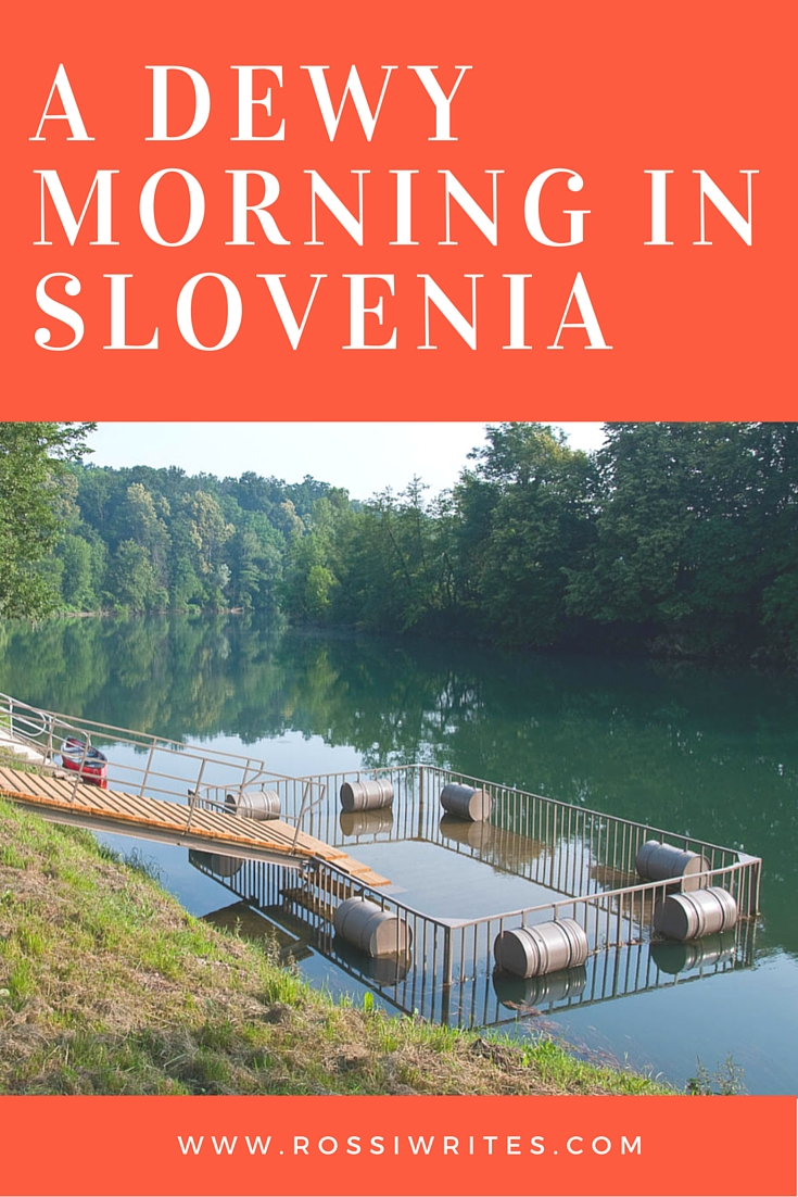 Pin Me - A Dewy Morning in Slovenia - www.rossiwrites.com