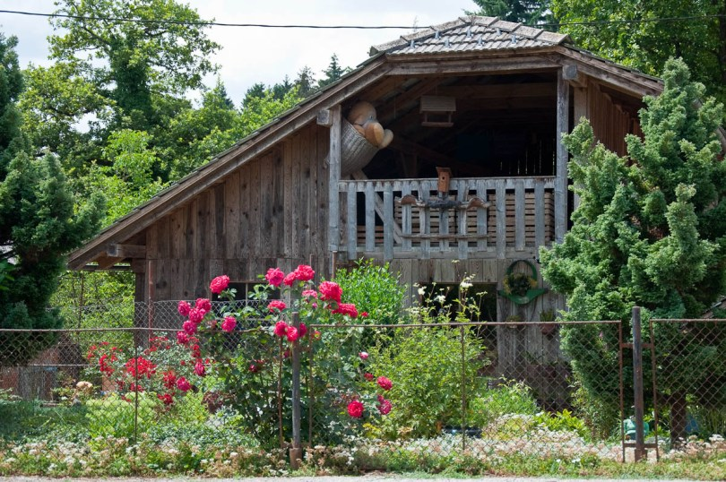Kozolec - Traditional wooden hayrack barn with a big plush toy, Bela Krajina, Slovenia - www.rossiwrites.com