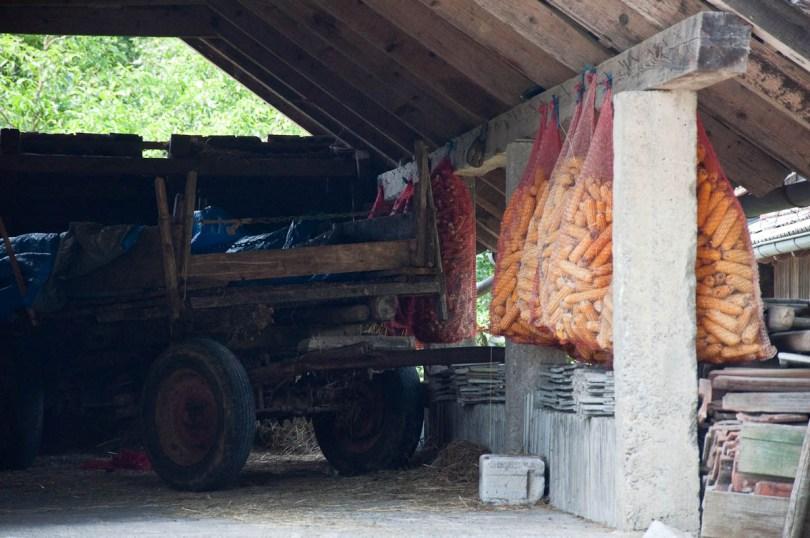 Kozolec - Traditional wooden hayrack barn with bags with dry corn, Bela Krajina, Slovenia - www.rossiwrites.com