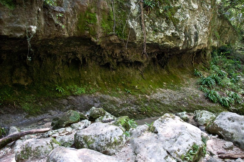 Inside Parco delle Cascate, Province of Verona, Italy - www.rossiwrites.com