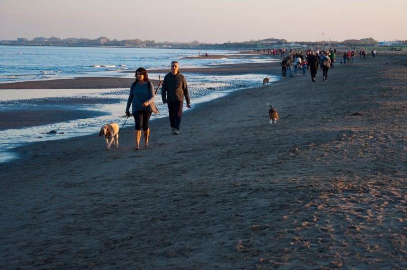 Dog walkers at the Sottomarina beach at sunset - Chioggia, Veneto, Italy - www.rossiwrites.com