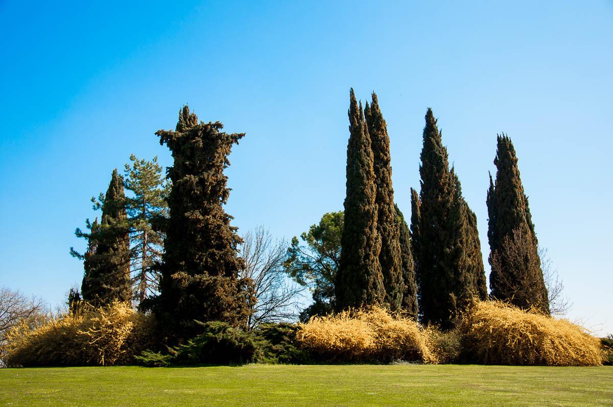 A view of parco giardino sigurta valeggio sul mincio veneto italy - Parco giardino sigurta valeggio sul mincio vr ...