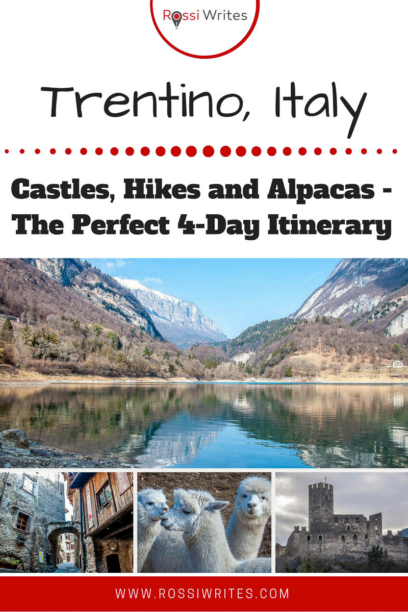 Pin me - Trentino, Italy - Castles, Hikes and Alpacas - The Perfect Four-Day Itinerary - www.rossiwrites.com