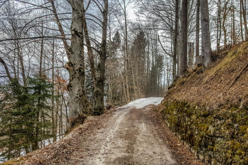 The path leading to the Monte Ricco Fort - Pieve di Cadore, Veneto, Italy - www.rossiwrites.com