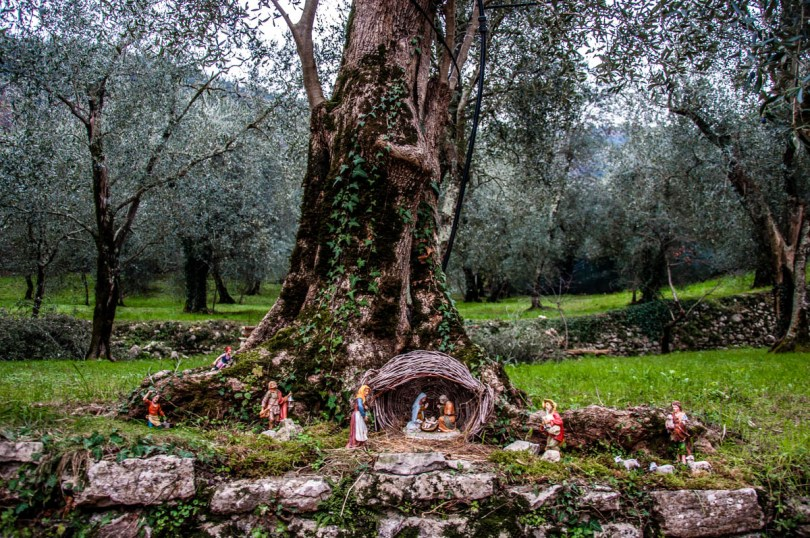 Nativity Scene at the base of a tree - Campo di Brenzone - Lake Garda, Italy - www.rossiwrites.com