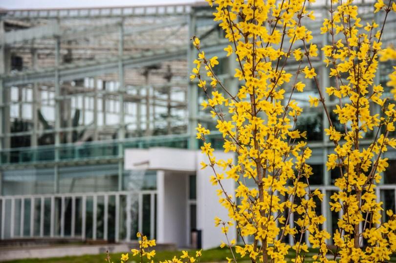 Biodiversity Building - Padua University Botanical Garden - Padua, Veneto, Italy - www.rossiwrites.com