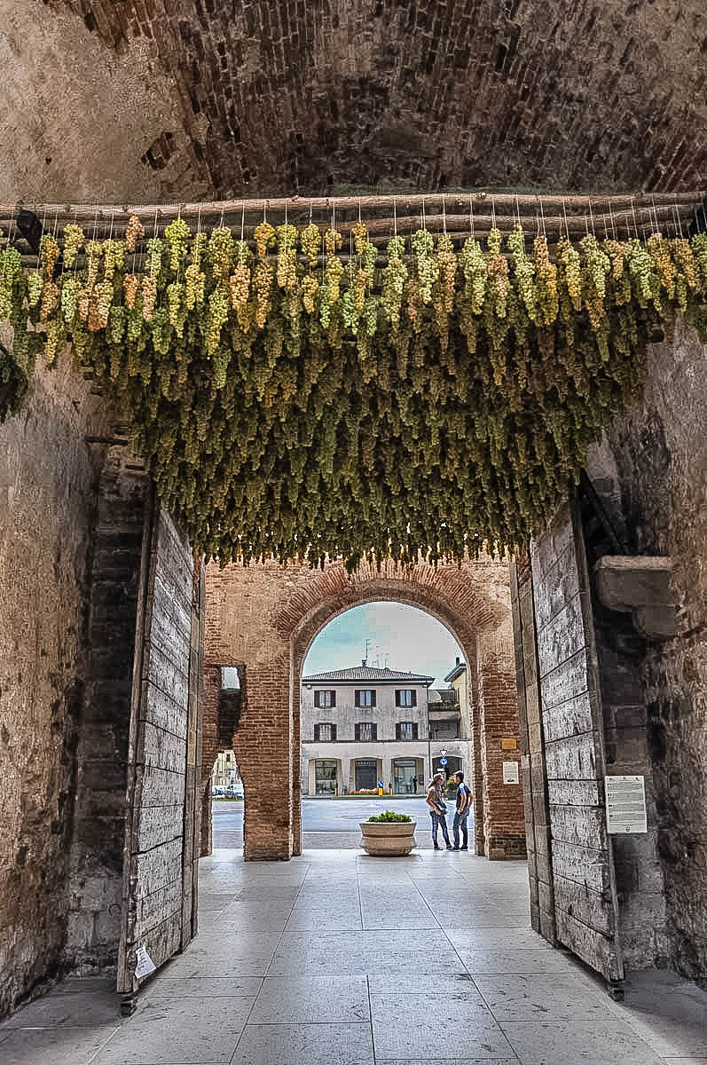 Grape festival in Soave - Veneto, Italy - rossiwrites.com