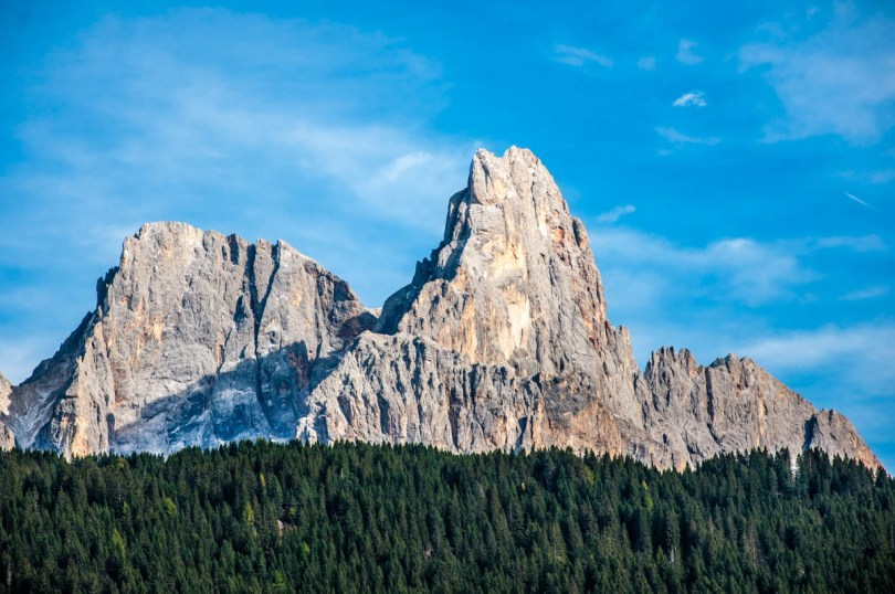 Paneveggio - The Violins' Forest - with the Pale di San Martino - Dolomites, Trentino, Italy - rossiwrites.com