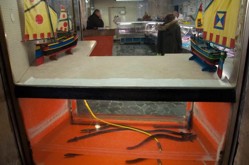 Fish shop in Sotto il Salone in Padua - Veneto, Italy - rossiwrites.com