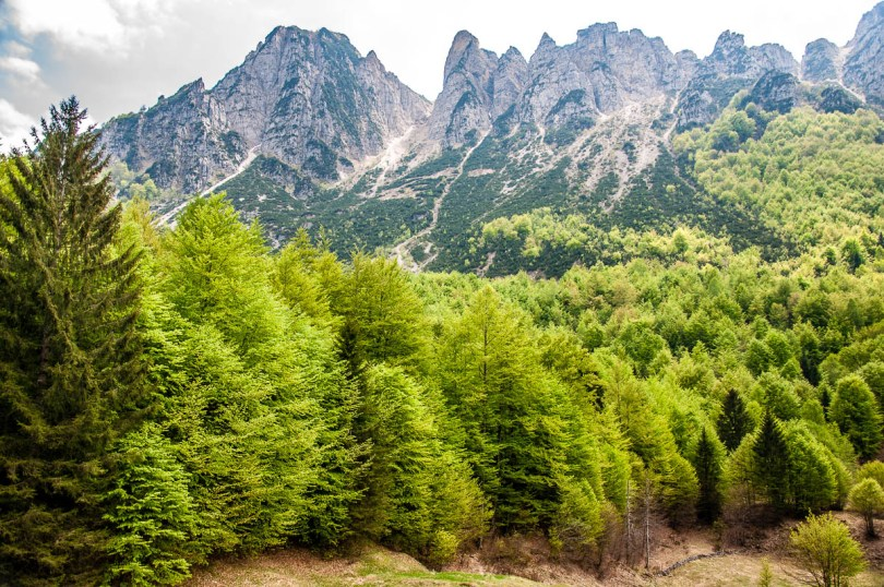 A view of lush forests and rocky peaks in the Little Dolomites - Sentiero dei Grandi Alberi - Province of Vicenza, Veneto, Italy - rossiwrites.com