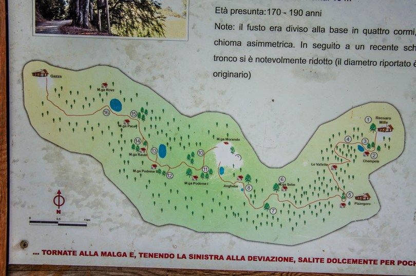 The map of the hike - Sentiero dei Grandi Alberi - Province of Vicenza, Veneto, Italy - rossiwrites.com