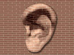Image result for walls have ears