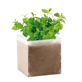 """Compost with seeds """"MINT"""""""