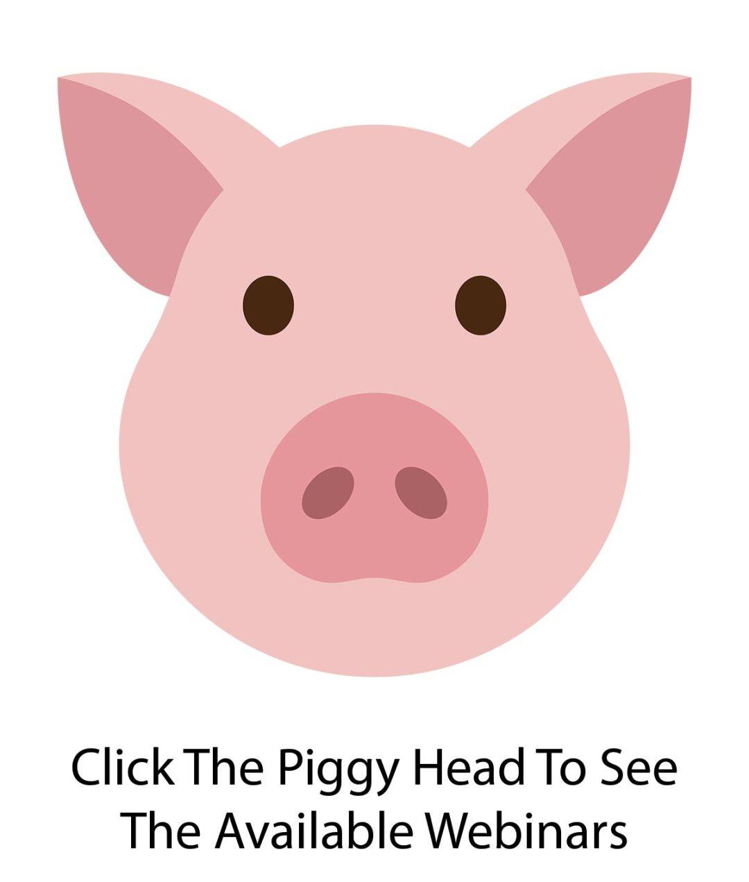 Webinars about your piggy