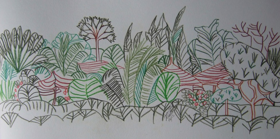From Seed. Inktense pencils. 41 x 19cm. POA