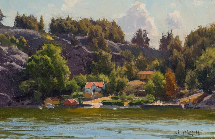 Summer in Sweden 8x12