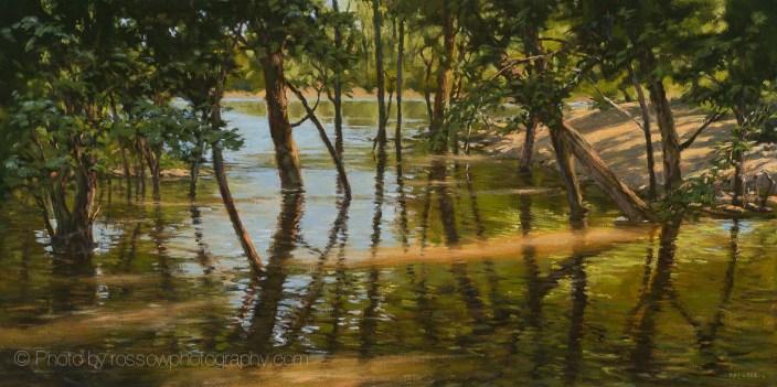 Minnesota River Spring Panorama Tom McGregor