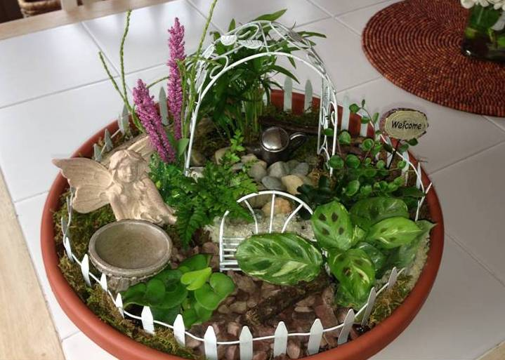 Miniature Gardens For Sale  Ross Plants  Flowers  Orefield PA