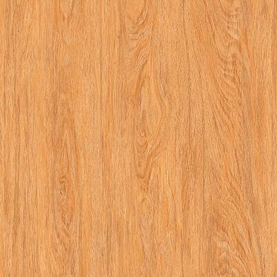 keramik garuda motif kayu lantai dapur kamar ukuran 40x40