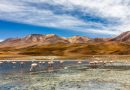 Bolivia | The Best Hotel Booking