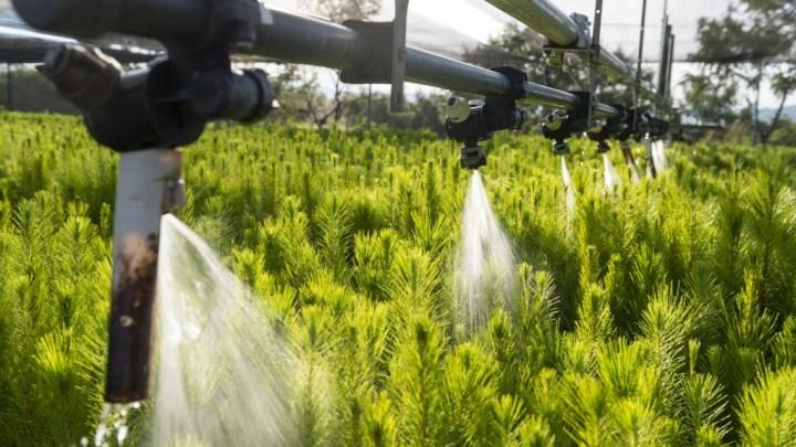 Diputados de Morena ya se dieron cuenta de su error, ahora piden a senadores rechazar eliminar exención del pago por consumo de agua a campesinos