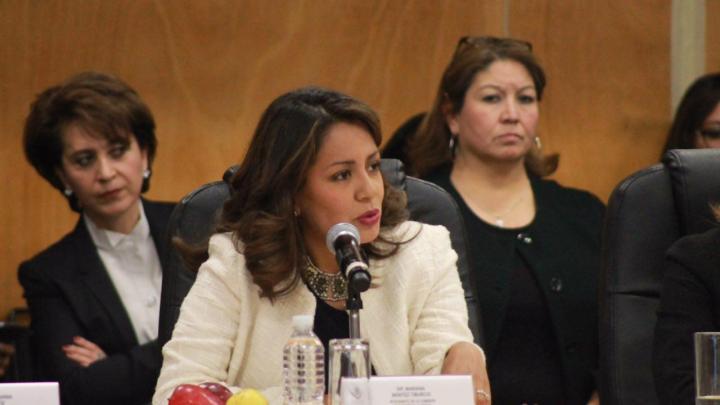 Poder Legislativo y SEDESOL trabajarán para perfeccionar instrumentos de política pública: Mariana Benítez