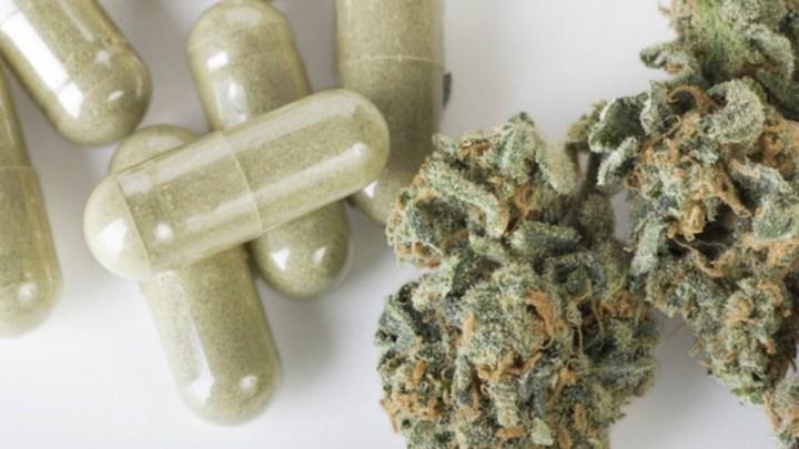 Congreso oaxaqueño ampliará debate sobre regulación de la marihuana