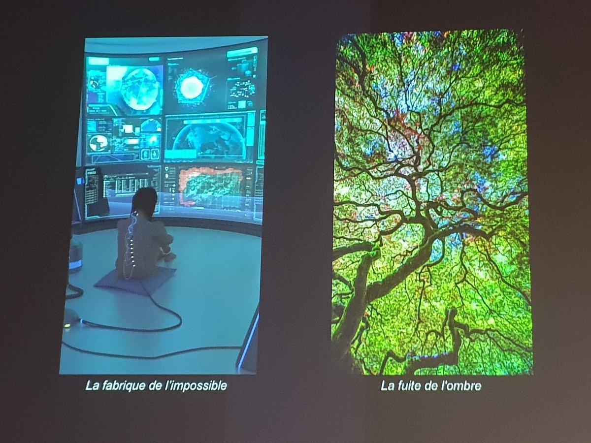 tree connectedness machines growing creativity digital trends foresight rotana ty