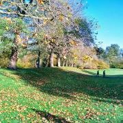 explore walk greenwich park london slow three autumn travel rotana ty
