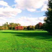 park autumn forest three society leadership community citizenship learning rotana ty