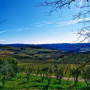 tuscany italy sky blue landscape hill green tree leadership learning work community rotana ty