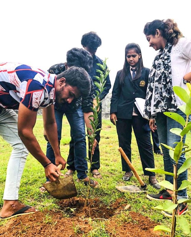 Rotaractors plant saplings on a school campus.