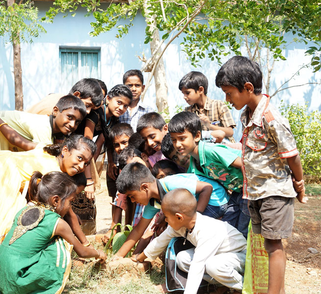 Suchitra and her friends tend to the sapling gifted to her by the late Cabinet Minister H S Mahadeva Prasad.