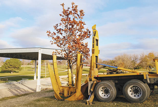 A tree spade is used to plant an oak tree at Skyview Park.