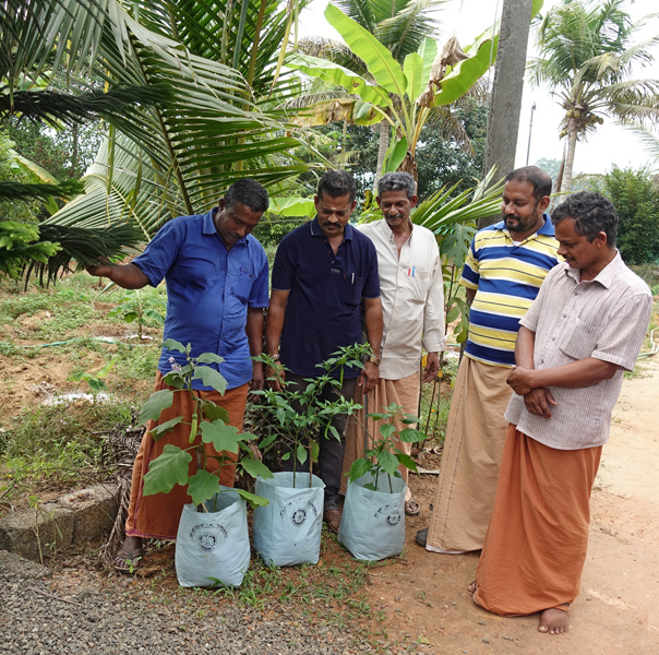 A group of farmers inspecting plants in Grow Bags provided by the Rotarians.