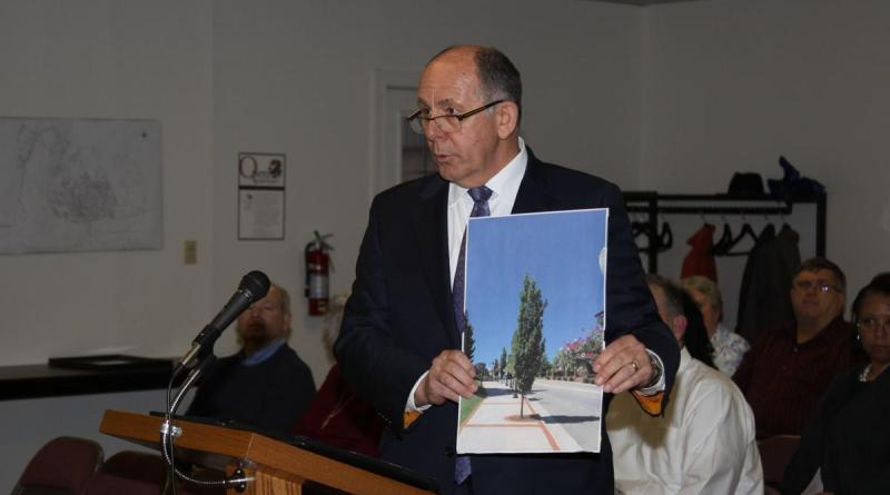 Mike Lyon of the South Boston Rotary Club seeks the support of town council for his club's grant application for up to $5,000 to help replace 51 Bradford pear trees lining streets in downtown portions of the town. Photo: Doug Ford/Gazette-Virginian